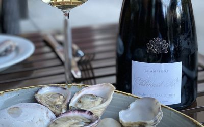 Diving Deeper with Shellfish Pairings